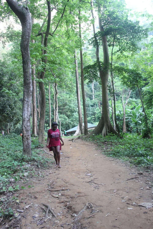 Wander lusting in Wli